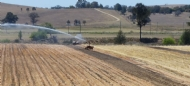 Cover crops and strip tillage is helping Bathurst pumpkin grower to save water