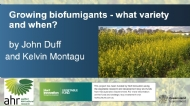 Biofumigation Cover Crops PART 1: What variety and when?