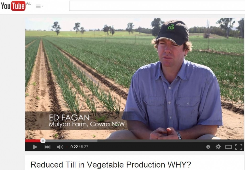Reduced till in vegetable production —WHY?