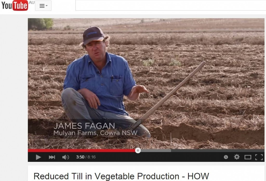 Reduced Till in Vegetable Production - HOW?