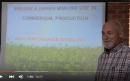 Introduction to green crops and biofumigation