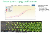 Don't get caught out by rapid increases in crop water use in spring-early summer