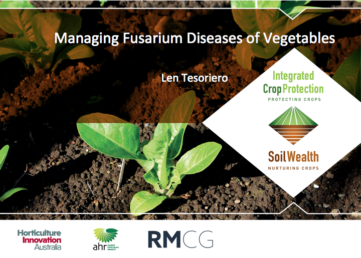 Fusarium wilt management in vegetables with Dr Len Tesoriero (webinar recording)