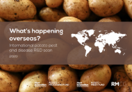 International potato pest and disease R&D scan