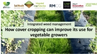 Integrated weed management (Webinar 2 of 3): How cover cropping can improve its use for vegetable growers