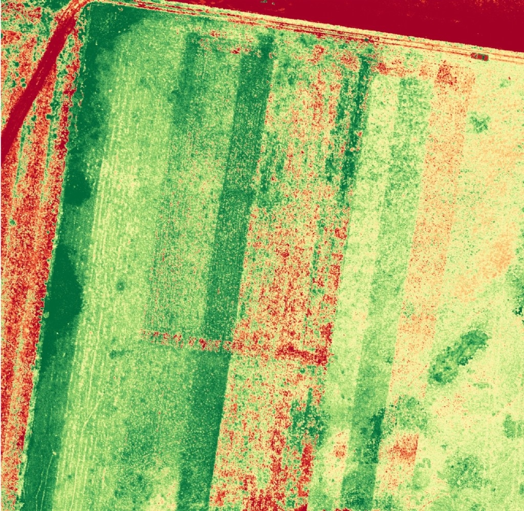 How to get and use the free 10m NDVI maps through DataFarming