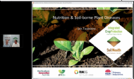 Nutrition management and plant disease with Dr Len Tesoriero