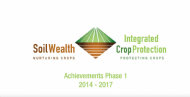 Soil Wealth and ICP Achievements Phase 1
