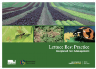 Lettuce Best Practice: Integrated Pest Management