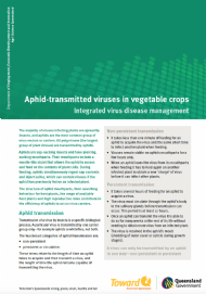 Aphid-transmitted viruses in vegetable crops: Integrated virus disease management