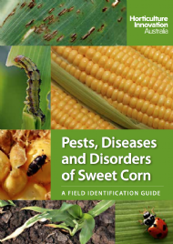 Pests, Diseases and Disorders of Sweet Corn: A field identification guide