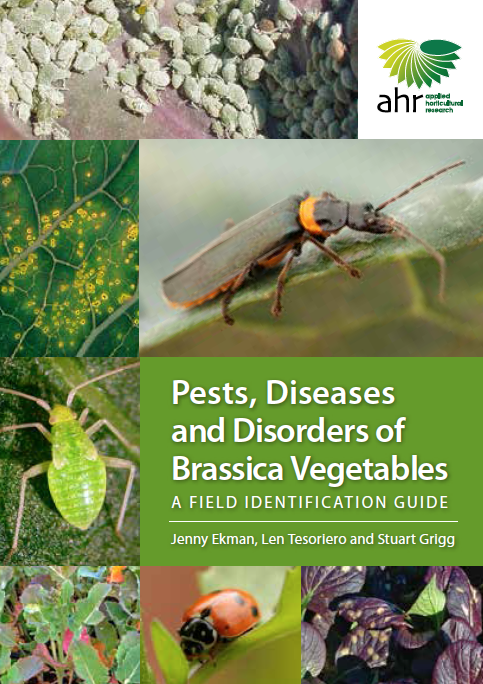 Pests, Diseases and Disorders of Brassica Vegetables: A field identification guide