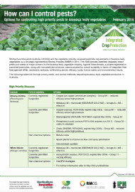 How can I control pests? Options for controlling high priority pests in brassica leafy vegetables