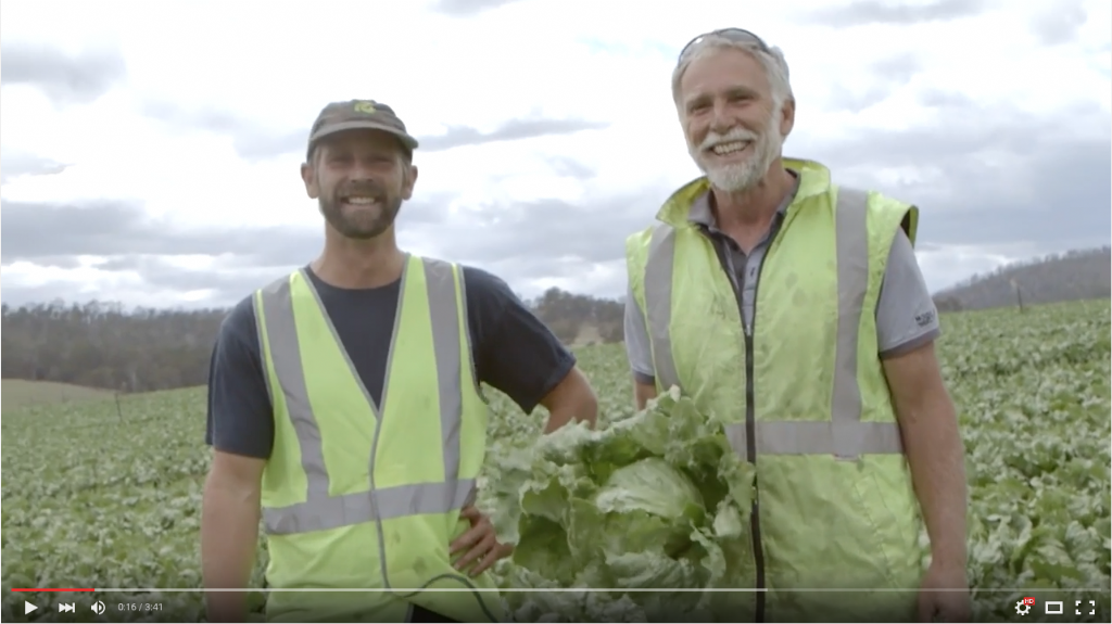 Southern Fields Vegetable Farm Demonstration Site - Experiences from leading growers