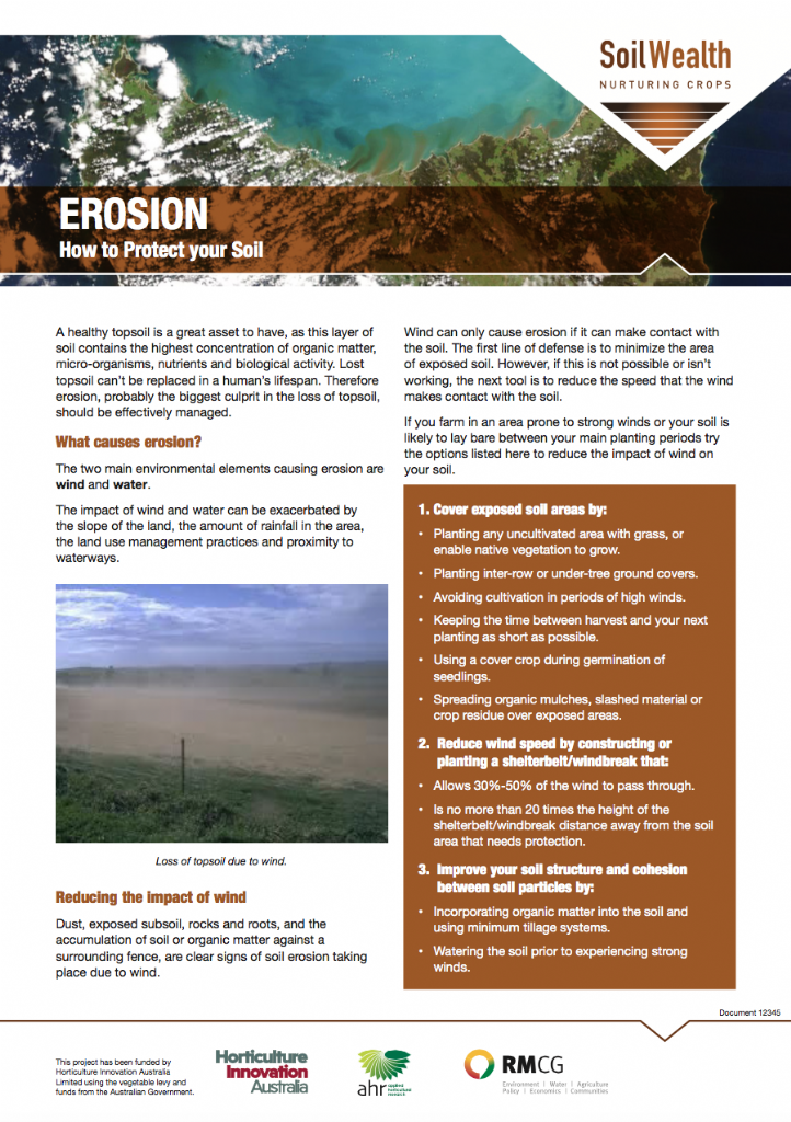 Erosion: how to protect your soil