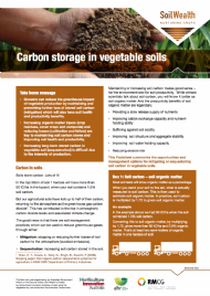 Carbon storage in vegetable soils