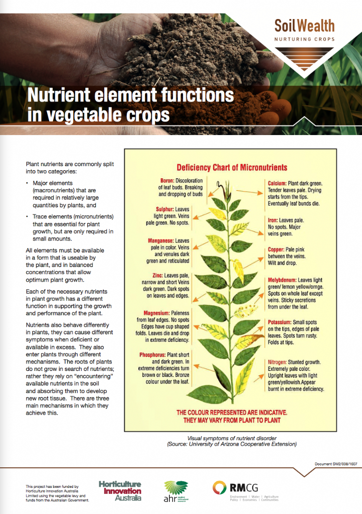 Nutrient element functions in vegetable crops