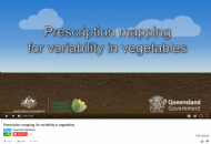 Variable Rate Technologies in Queensland vegetables