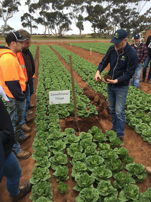 Werribee Farm Walk and demonstration site update – can 'softer' tillage work?