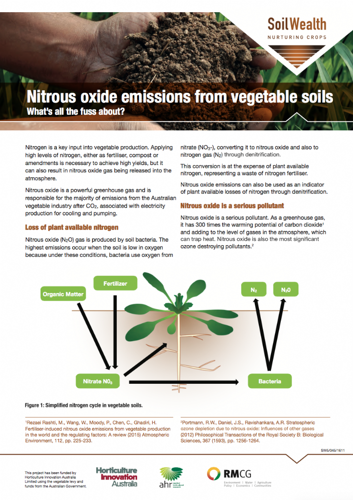 Nitrous oxide emissions from vegetable soils: What's all the fuss about?