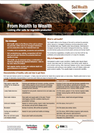 From Health to Wealth: Looking after soils for vegetable production