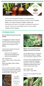 Fortnightly Bulletin Issue 16