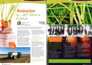 Updates on cover crops and soil borne disease in WA Grower magazine