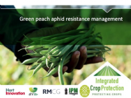 Green peach aphid resistance management with Dr Siobhan de Little
