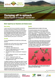 Damping off in spinach; Best bet fungicide and biologicals - trial 2016-2017