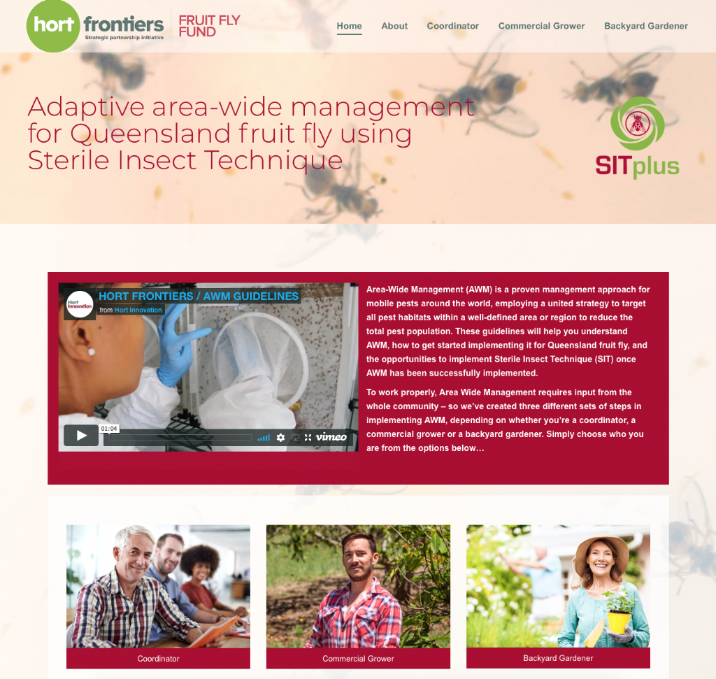 Adaptive Area-Wide Management for Queensland Fruit Fly using Sterile Insect Technique