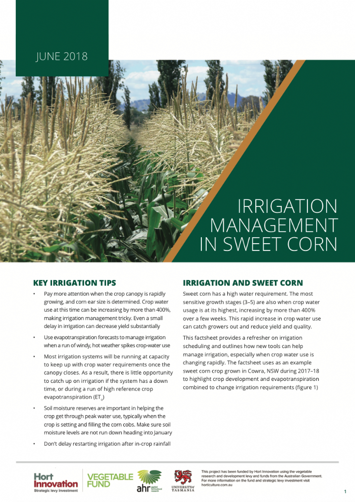 Irrigation Management in Sweet Corn