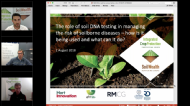 The role of soil DNA testing in managing the risk of soilborne diseases – how is it being used and what can it do?