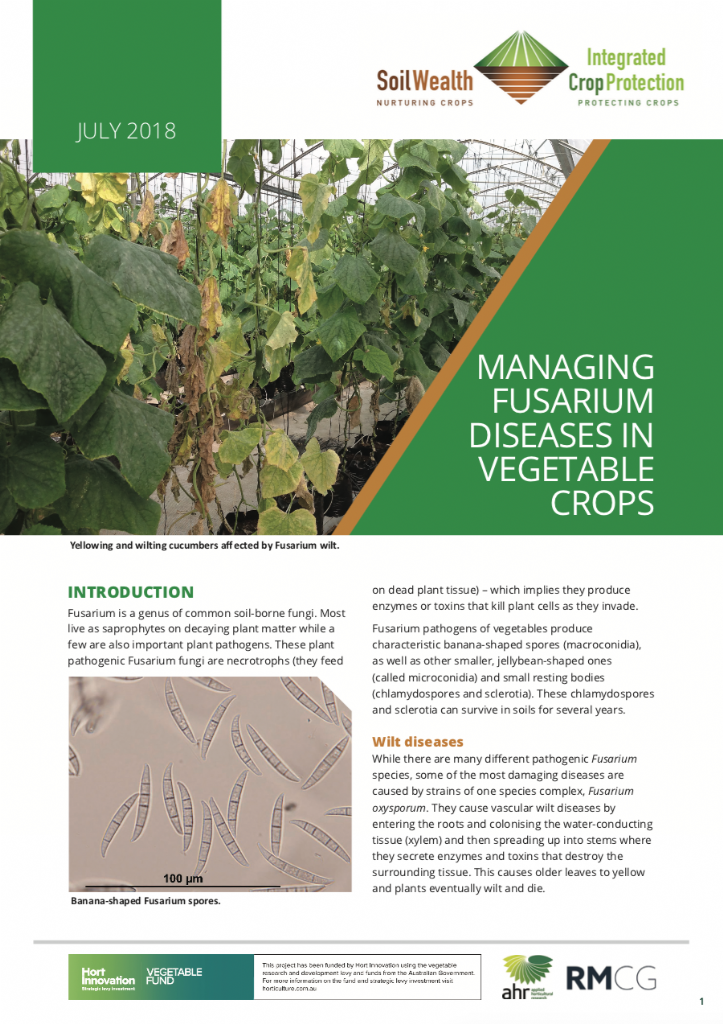 Managing fusarium diseases in vegetable crops