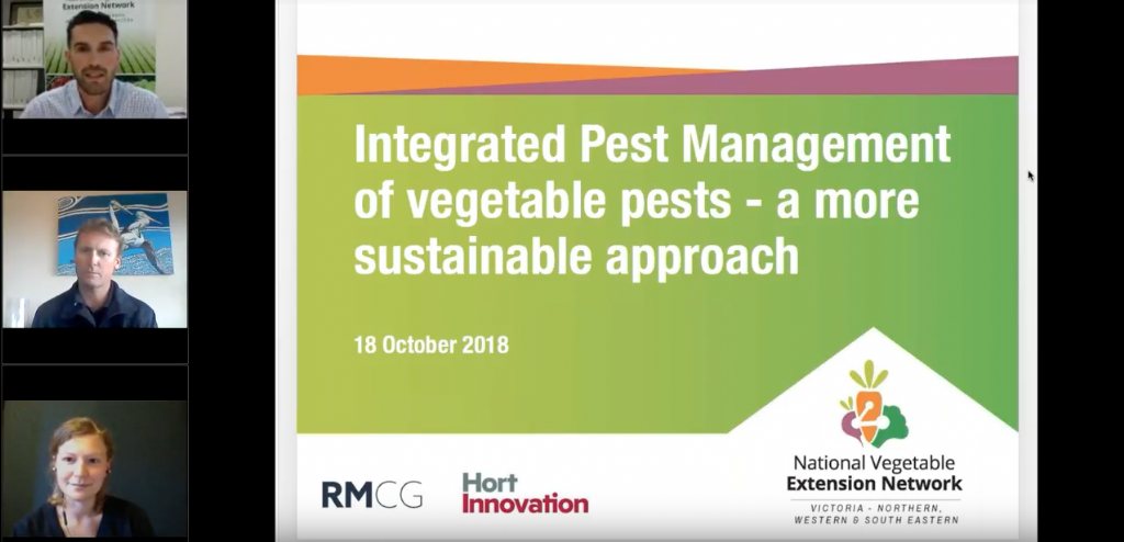 Integrated Pest Management of vegetable pests - a more sustainable approach (webinar recording)
