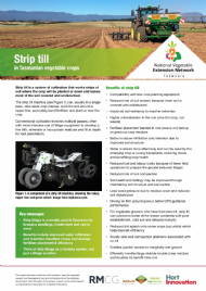 Strip-till in Tasmanian vegetable crops