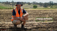 Lyndon Orpwood discusses the benefits of strip-tillage to Simplot Australia