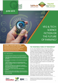 Veg and tech: Science fiction or the future of farming?