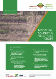 Managing salinity in vegetable crops