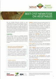Beet cyst nematode on vegetables