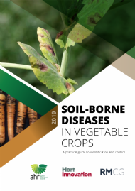 Soil borne diseases in vegetable crops - A practical guide to identification and control