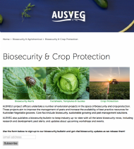 National vegetable and potato biosecurity program and handy translated resources