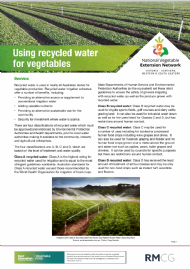 Using recycled water for vegetables