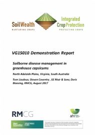 Soilborne disease management in greenhouse capsicums demonstration report - North Adelaide Plains, Virginia, South Australia