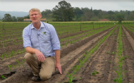 East Gippsland Vegetable Innovation Days - Cover crops and strip-tillage live webinar panel session