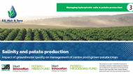 Salinity and potato production (Part 3 of 4): Managing hydrophobic soils in potato production
