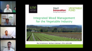 Integrated weed management (Webinar 1 of 3): A practical approach for vegetable growers