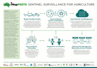 iMapPESTS: Monitoring airborne pests and diseases to help on-farm pest management