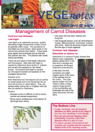 Management of Carrot Diseases