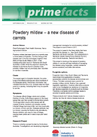 Powdery mildew - a new disease of carrots