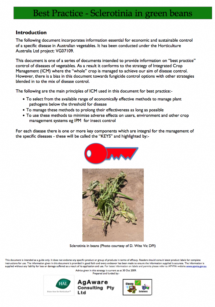 Best Practice for Vegetables - Sclerotinia in green beans